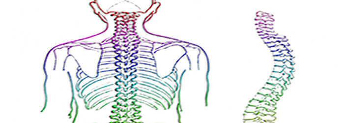 spinal cord stimulator update
